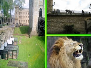 In the beginning of XIII century John Lackland contained in the Tower of lion